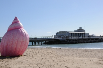 Image of a pink inflatable shell on a beach