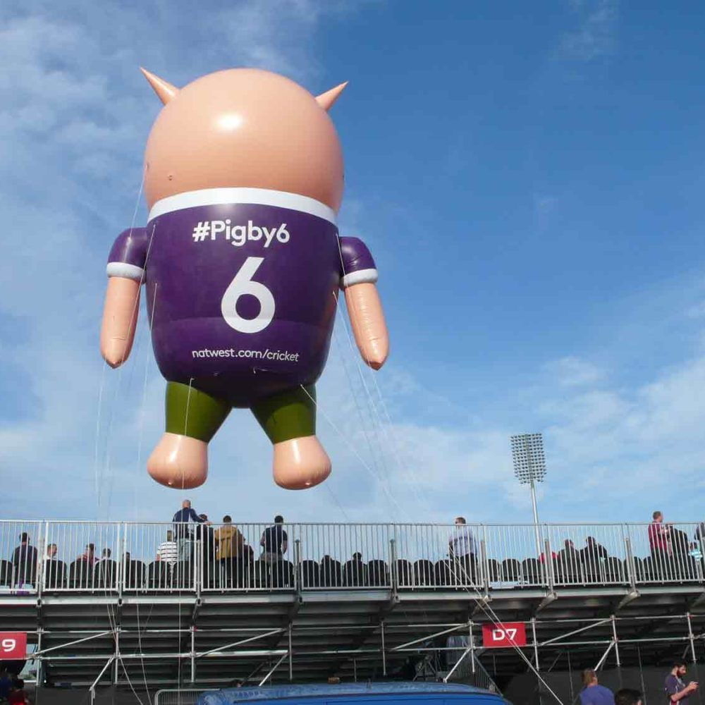 NatWest Pigby flying over cricket stand