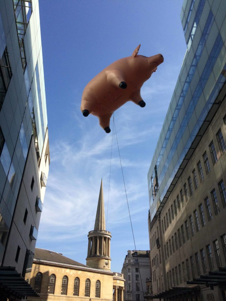 inflatable pig flying