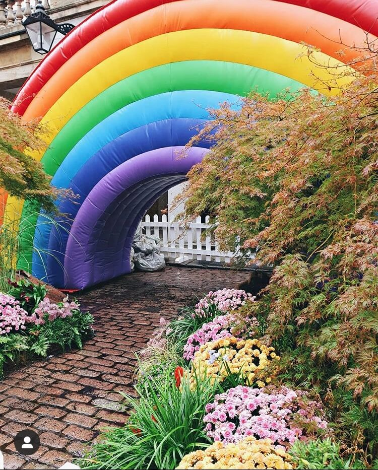 plants and custom inflatable rainbow
